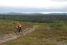 Saariselkä MTB 2015 | Saariselkä / Pictures from Mountain bike event Saariselkä MTB. More about the Saariselkä MTB: www.saariselkamtb.fi. Cottages, apartments and activites from Saariselkä Booking. http://saariselka.com.