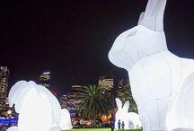 Light events / by Rita Antonieta Neves