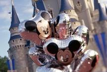 Disney World & Istanbul & New York / Dec 2013/Jan 2014