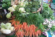 Defining Plant-Based Diets / Gluten Free, Macrobiotic, Raw Food, Whole Food Plant-Based Diets