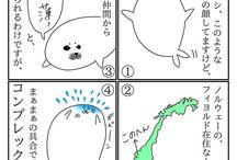 アザラシまんが / 漫画 manga マンガ まんが 4コマ アザラシ seal 猫 ネコ ネコ cat 亀 カメ タコ octopus ペンギン penguin オーロラ aurora 北極圏 旅 trip travel