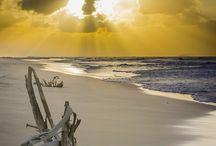 Playas naufragadas