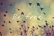 free / freedom. easy word but invaluable.