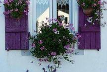 Beautiful garden shutter ideas