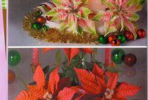soraya flores de Natal