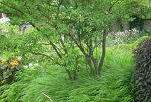 tuinstijl: avontuurlijk