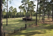 Hilltop Farm - Southern Pines, NC - November 15th / by Grand Estates Auction Company