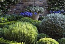Ladne ogrody