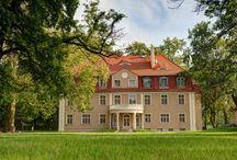 Brzezina - Pałac