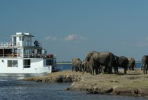 Pride of Zambezi / The Pride of Zambezi is a houseboat located on the Chobe River, Botswana.  This luxury boat has a wonderful dining room, viewing decks all the way round the boat and private smaller boats for closer wildlife sightings and fishing excursions.  Let the world drift by...