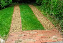 alternative to lawn / by Rebecca Ford