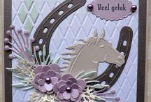 Heste kort