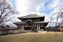 Our Japan Trip