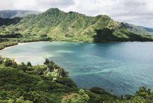 Aloha Vibes