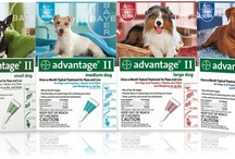 Flea & Tick / Use topicals, sprays and dips help to ensure that your pet will be flea and tick free! For more information on fleas and ticks visit our Flea & Tick Article Section. Flea and Tick solutions broken down by category. / by EntirelyPets.com