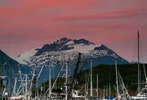 Valdez, Harbor