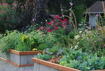 Simple Raised Garden Beds / Build our raised beds with minimal construction. Most plans require carpentry skills and are constructed completely of expensive lumber. Our unique concrete paver design saves hours of construction and hundreds of dollars using minimal lumber and basic construction.Includes materials and tools list to create ready-to-plant.