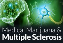 MS and Cannabis / www.unitedpatientsgroup.com