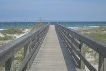 Daytona Beach, FL / by Beach.com