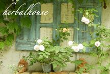 ガーデン 写真