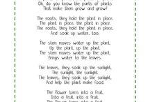 Preschool (4 years) Lesson Planning / by Holly Boyer
