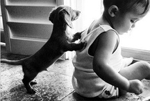 Puppies and Babies / The ultimate cuteness package: puppies and babies.