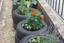 The Moose Hub Eco Friendly Garden / Ms Moose's inspirational eco friendly garden ideas.