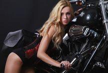 Harley Davidson / Custom Harley Davidson Fat Bob