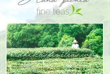 Radhikas Fine Teas / Learn more about the tea gardens, tea processing methods and unique blends curated by Radhikas Fine Teas and Whatnots.