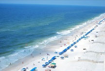 The Beach / Take advantage of the beautiful sandy white beaches of the Gulf of Mexico!
