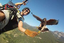 Hobby / Paragliding