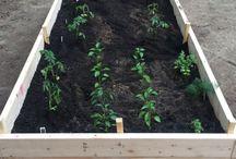 Elna Gardening