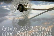 Sprüche und Zitate / Phrases