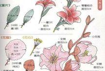 postup kytky