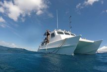 Our newest underwater Pictures / pictures from our dive tour in Honolulu Hawaii.