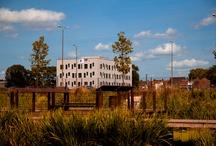 Urbawood, vues extérieures, construction bois / Urbawood est un projet innovant de bâtiment tertiaire 100% bois, orienté développement durable, né de l'association de 3 promoteurs : Gérim, Nacarat et Création Bois Construction.