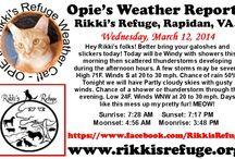 Opie's Weather Reports / Rikki's Refuge, Rapidan, Virginia, www.rikkisrefuge.org