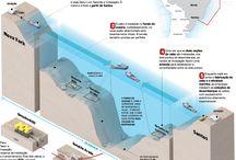 Undersea Cables / Cabos Submarinos