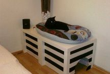gateras y casas gatos