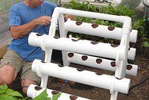 hidroponik.kebun