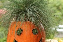 Boo! It's Halloween! / All things spooky, creepy and fun! / by Teri Gault