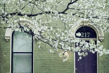 Doors and Windows of Distinction / by Lynda Gorgopa