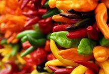 Peperonicino / Piante, cura e tutto sul peperoncino