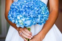 ♥Boda: bouquet de un solo color♥