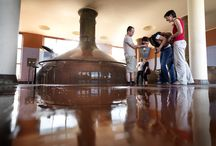 Visit Mechelen & Brewery Het Anker