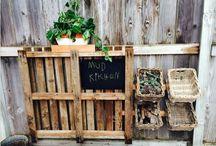 podwórko- ogródek