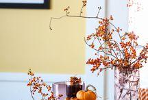 Decorating for Fall / by JoLynn Robinson