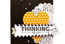 SU Everyday Occasions card kit / by Angelika Preiss