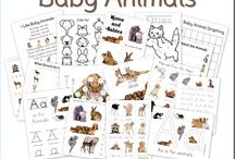 Animal Fun for the Homegrown Preschooler