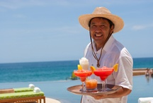What to Drink  / by Los Cabos Tourism
